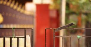 Винтажная дверь открытая Экстерьер дома Стоковые Изображения RF