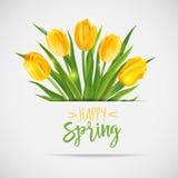 Винтажная карточка весны - с желтыми тюльпанами Стоковые Фотографии RF