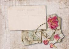 Винтажная карточка с подняла на старую бумагу Стоковое Изображение