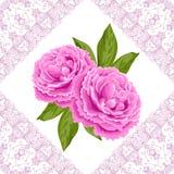 Винтажная карточка цветка с пионами Стоковое Изображение RF
