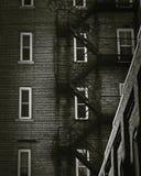 Винтажная лестница обслуживания здания стоковые фотографии rf