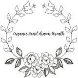 Винтажная линия нарисованный monochrome венок цветка стоковое изображение