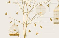 Винтажная открытка 3 птиц Стоковая Фотография RF