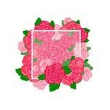 Винтажная поздравительная открытка акварели с зацветая цветками Розы, w Стоковые Изображения