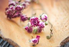 Винтажная предпосылка с сухими розами чая Стоковые Изображения