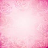 Винтажная предпосылка роз бесплатная иллюстрация