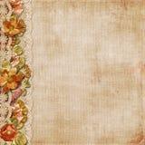 Винтажная предпосылка с шикарными цветками и шнурком Стоковое Изображение RF