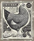 Винтажная птица и яичка рекламируя страницу Стоковое Изображение RF