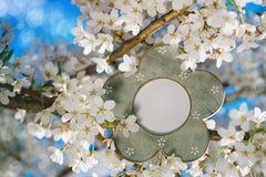 Винтажная рамка фото с цветком Сакурой вишни цветения Стоковое фото RF