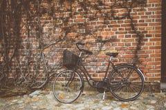 Винтажная склонность велосипеда на стене Стоковые Фото