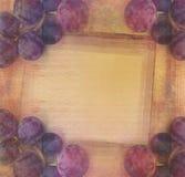 Винтажная стилизованная гирлянда лозы, предпосылка Стоковые Фотографии RF