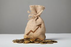 Винтажная сумка с деньгами на золотых монетах Символ роста и успеха в бизнесе стоковые фотографии rf