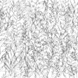 Светлая предпосылка от цветков контура Чертеж плана с цветками и зацветая травами Винтажная текстура для украшения ткани, иллюстрация вектора