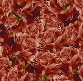 Винтажная флористическая красная красивая предпосылка тюльпаны цветка повилики состава предпосылки белые Букет цветков от красных Стоковое фото RF