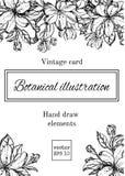 Винтажная флористическая карточка с цветками сада романтичная предпосылка также вектор иллюстрации притяжки corel Стоковое Изображение RF