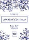 Винтажная флористическая карточка с цветками сада романтичная предпосылка также вектор иллюстрации притяжки corel Стоковые Изображения