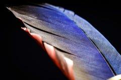 Винтажная чернильница с гусын-quill внутрь Стоковые Изображения RF