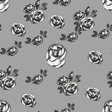 Винтажная черно-белая розовая картина Стоковое фото RF