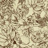 Винтажная Monochrome безшовная предпосылка, тропический плодоовощ, цветки, бабочка и птицы бесплатная иллюстрация