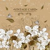 Винтажная Monochrome флористическая карточка с фиолетами иллюстрация штока