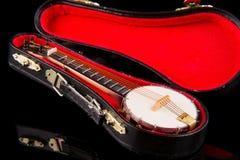 Винтажное банджо Стоковое Фото
