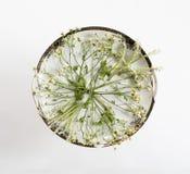 Винтажное блюдо и цветки Надземный взгляд Плоское положение, взгляд сверху Стоковые Фотографии RF