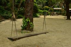 Винтажное деревянное качание около большого дерева на пляже песка стоковое изображение rf