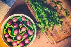 Винтажное изображение и мягкий свет свежих баклажанов и свежих овощей Стоковое фото RF