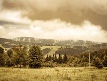 Винтажное пасмурное ladscape, луг и лес туманной горы Стоковые Фото