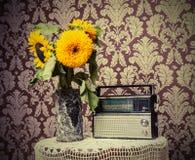 Винтажное радио Стоковые Фотографии RF