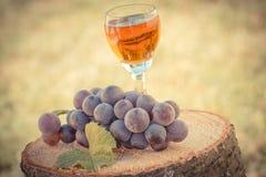 Винтажное фото, виноградины с лист и бокал вина на деревянном пне в саде Стоковые Фото