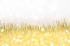 Винтажное фото пирофакела поля и объектива Стоковая Фотография