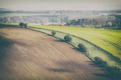 Винтажное фото полей Rolling Hills и зеленой травы Стоковые Фотографии RF