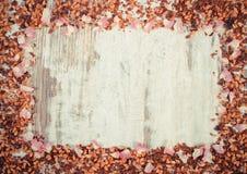 Винтажное фото, рамка высушенных одичалых лепестков розы и зерна чая, космос экземпляра для текста Стоковая Фотография