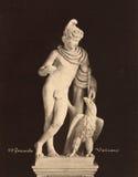 Винтажное фото Ganimede в музее 1890 Ватикана Стоковое Изображение