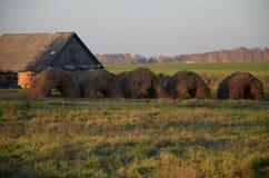 Винтажное haycock Стоковое Фото