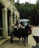 Винтажной езда экипажа 50's нарисованная лошадью, Квебек, Канада Стоковое Изображение RF