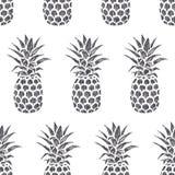 Винтажной иллюстрация нарисованная рукой ананаса лето свежих фруктов Стоковое Фото