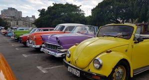 Винтажные автомобили в Гаване Кубе Стоковые Фото