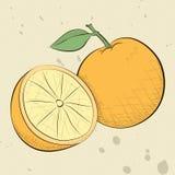 Винтажные апельсины стиля Стоковые Изображения RF