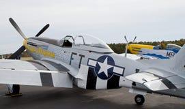Винтажные бойцы мустанга P-51 Стоковое фото RF