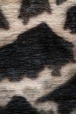 Винтажные бумаги Стоковые Фото