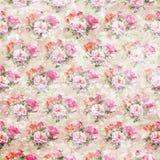 Винтажные затрапезные обои роз Стоковая Фотография