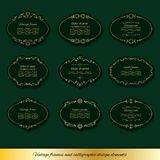 Винтажные золотые овальные установленные рамки Стоковая Фотография