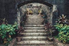 Винтажные каменные лестницы окруженные в горшке цветками стоковое фото rf