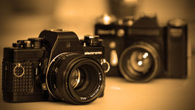 Винтажные камеры SLR Стоковое Изображение