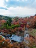 Винтажные крыша и романтичная улица и красочный от красного цвета и зеленого цвета Стоковые Фотографии RF