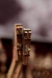 Винтажные ключи машинки, письмо m Стоковое фото RF