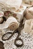 Винтажные отделки шнурка и шить детали Стоковые Фото