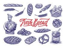 Винтажные установленные иллюстрации хлебопекарни Иллюстрация гравировки цвета вектора нарисованная рукой винтажная Стоковая Фотография